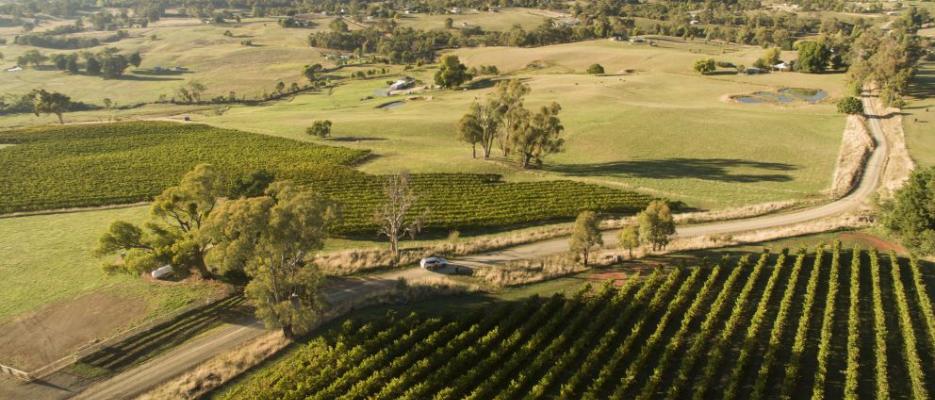 birdeyeview of the tumbarumba vines of vinyards